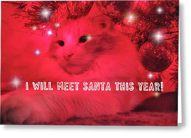 Where's Santa? Greeting Card by JAMART Photography