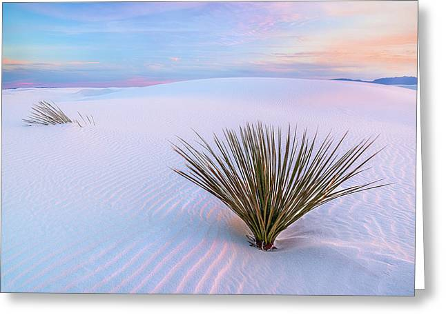 White Dunes, White Sands National Monument Greeting Card