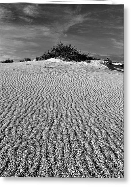 White Sands New Mexico Waves In Black And White Greeting Card