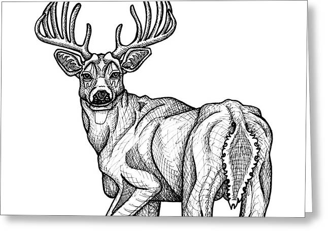 White Tailed Buck Greeting Card