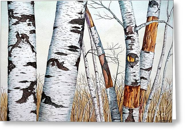 Wild Birch Trees In The Forest In Watercolor Greeting Card