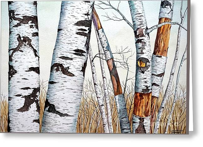 Wild Birch Trees In The Forest Greeting Card