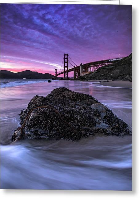 Wild Gate, Golden Gate Bridge Greeting Card by Vincent James