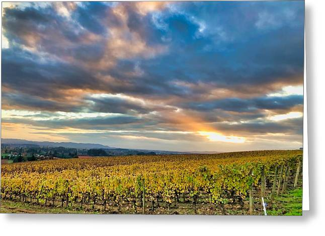 Willamette Valley In Fall Greeting Card