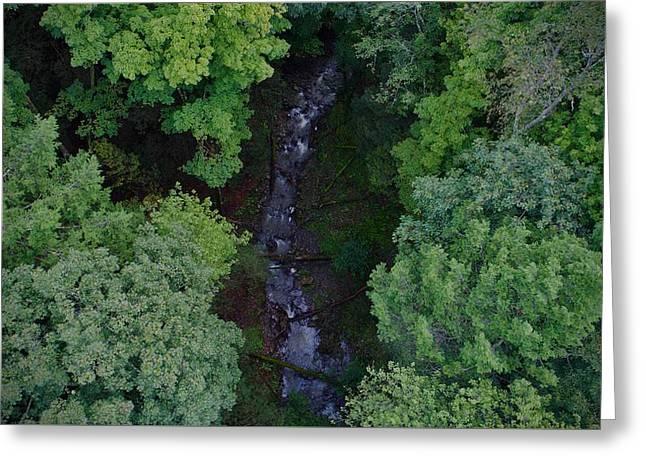Willow Run Creek Greeting Card