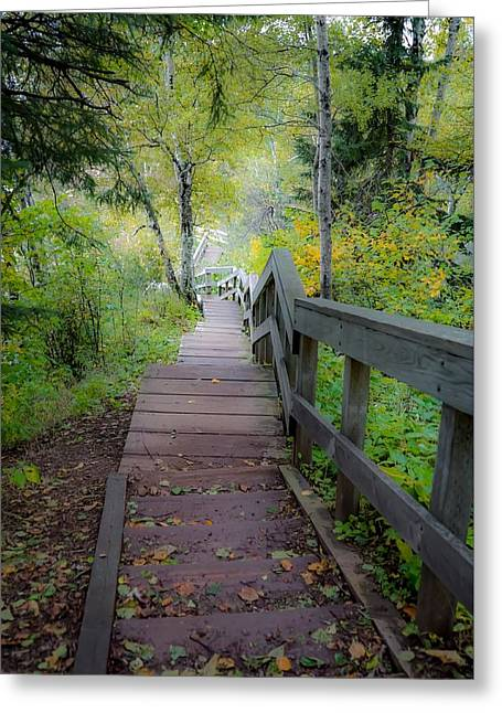 Winding Stairs In Autumn Greeting Card