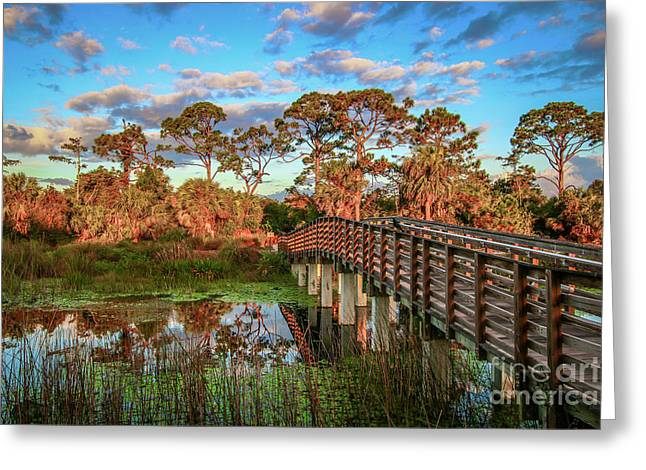 Winding Waters Boardwalk Greeting Card