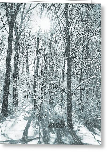 Winter Cold Greeting Card by JAMART Photography