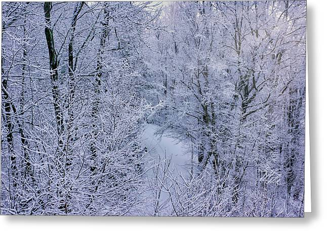 Winter Ice Storm Greeting Card