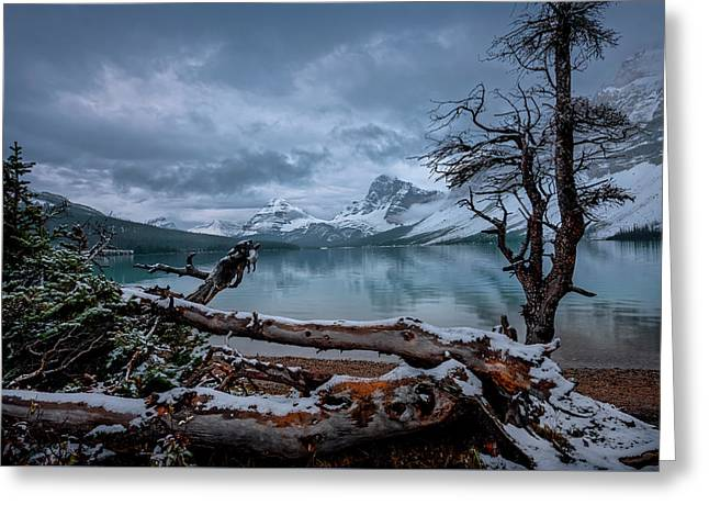 Winter Is Coming Bow Lake Greeting Card