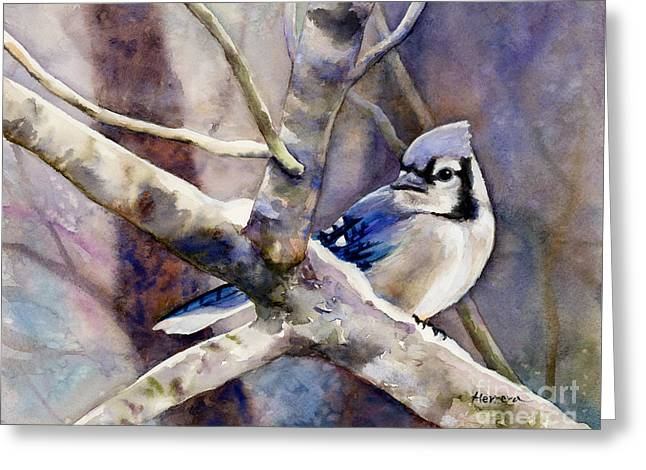 Winter Jay Greeting Card
