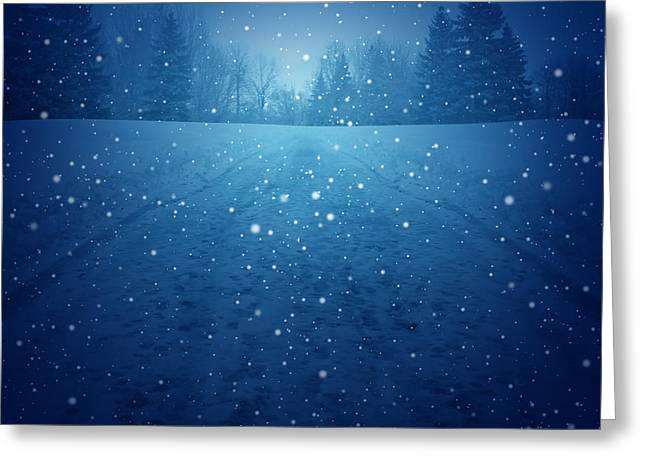 Winter Landscape Concept As A Snowing Greeting Card