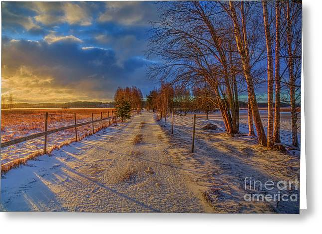 Winter Morning Light 6 Greeting Card