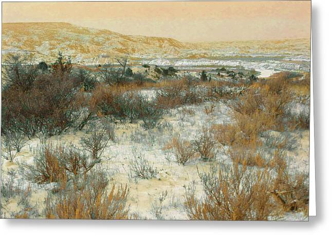 Greeting Card featuring the photograph Winter Near The Little Missouri by Cris Fulton