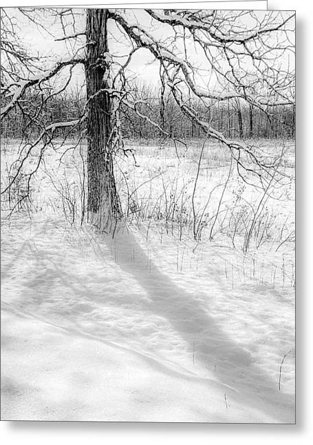Winter Simple Greeting Card