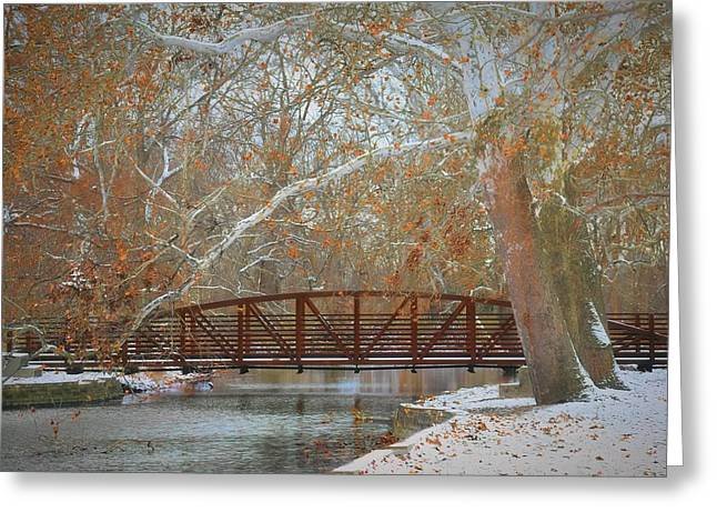 Winter Sycamores Greeting Card