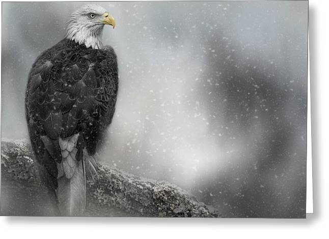 Winter Watcher Greeting Card