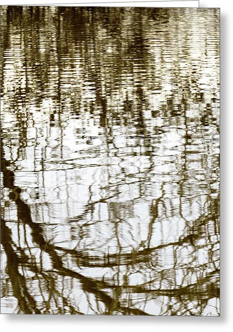 Winter Water Reflection - 19-5012  Greeting Card