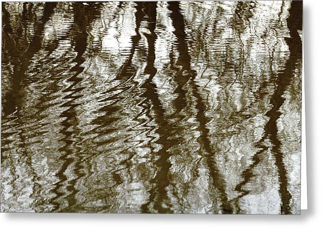 Winter Water Reflection - 5059-19 Greeting Card