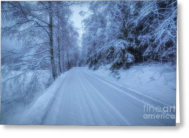 Winterland 13 Greeting Card