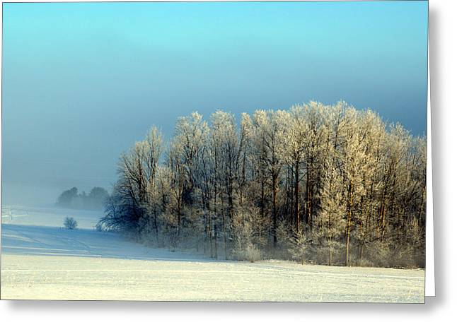 Winter's Heavy Frost Greeting Card