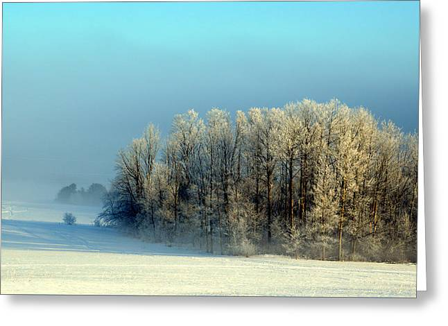 Greeting Card featuring the photograph Winter's Heavy Frost by SimplyCMB