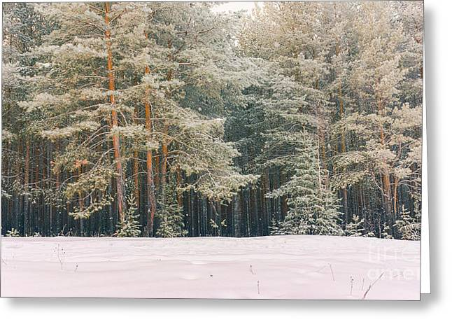 Wintry Landscape Scenery With Flat Greeting Card