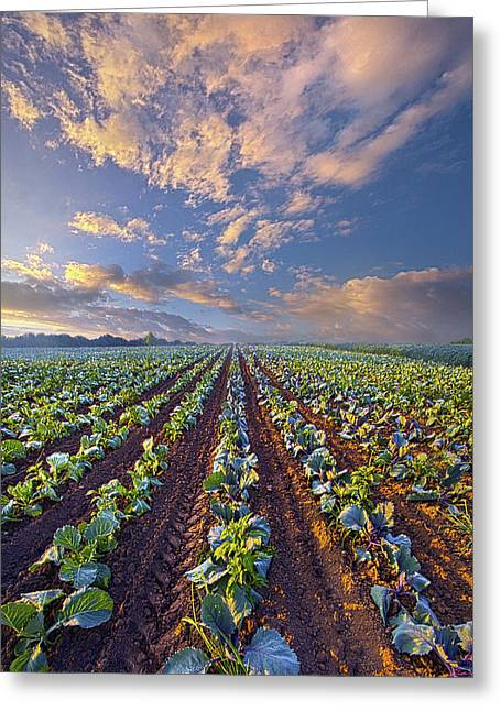 Greeting Card featuring the photograph With A Faith Born Not Of Words But Of Deeds by Phil Koch