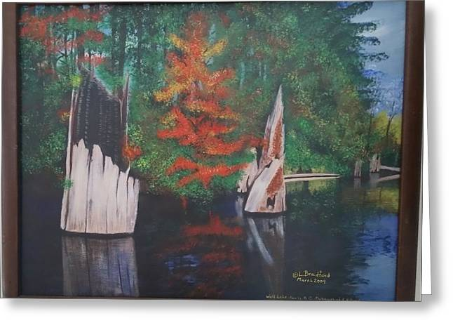 Wolf Lake On Vancouver Island  Greeting Card