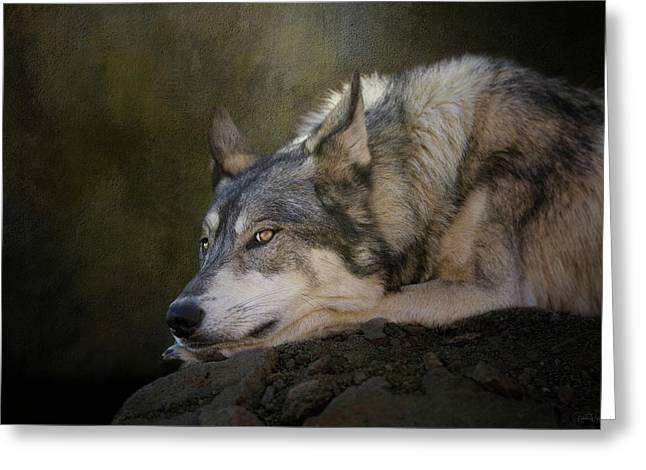 Wolf Watch Greeting Card