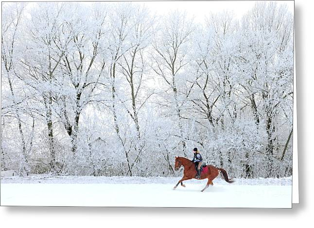 Woman And Her Horse Cantering In Fresh Greeting Card
