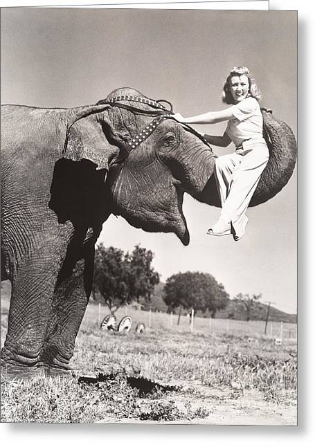 Woman Sitting On Elephants Trunk Greeting Card