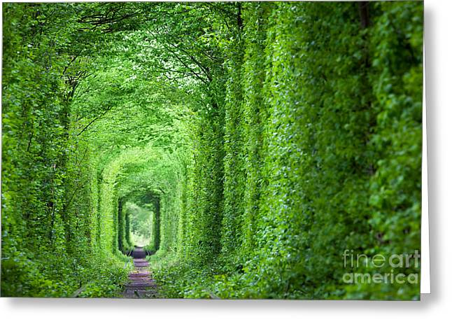Wonder Of Nature - Real Tunnel Of Love Greeting Card