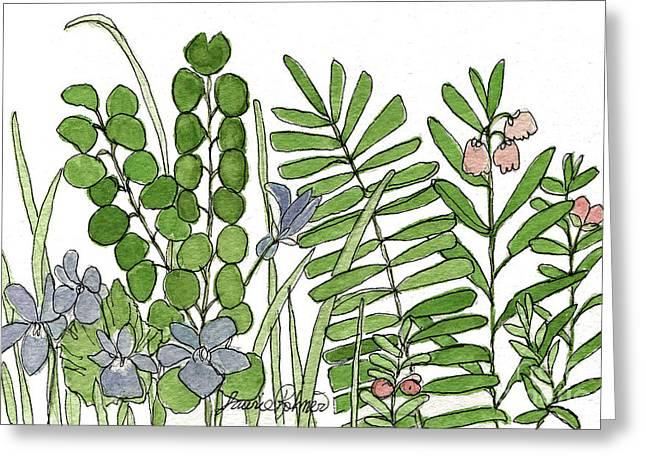 Woodland Ferns Violets Nature Illustration Greeting Card