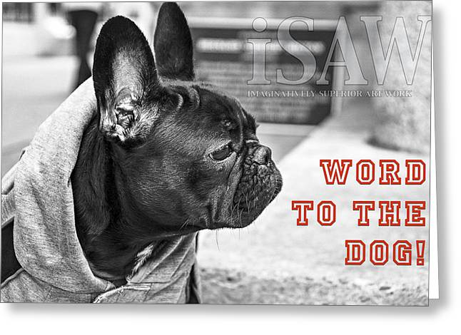 Word To The Dog Greeting Card