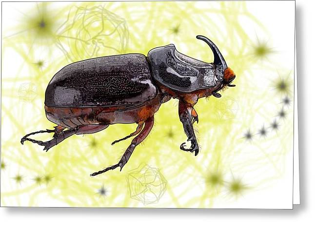 X Is For Xylotrupes Ulysses  Aka Rhinoceros Beetle Greeting Card