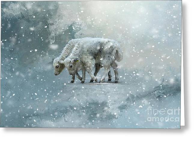 Yaks Calves In A Snowstorm Greeting Card