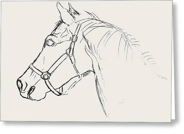 Greeting Card featuring the photograph Yearling White by JAMART Photography