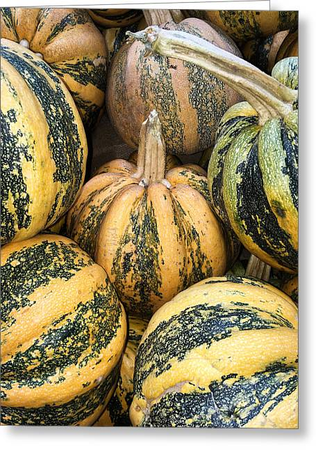 Yellow And Green Pumpkins Greeting Card
