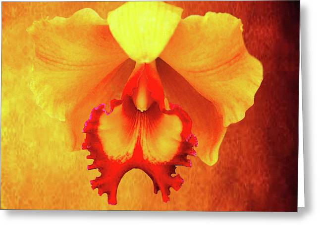 Yellow Exotic Greeting Card
