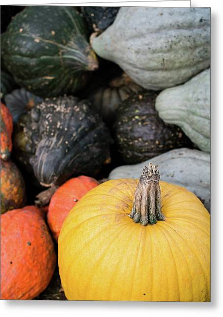 Greeting Card featuring the photograph Yellow Pumpkin by Whitney Leigh Carlson