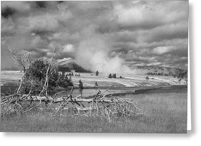 Greeting Card featuring the photograph Yellowstone Steam by Matthew Irvin