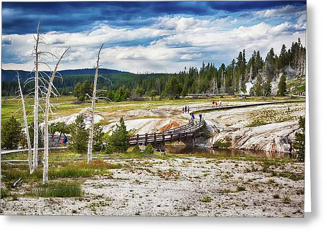 Greeting Card featuring the photograph Yellowstone Trails In The Geyeser Basin by Tatiana Travelways