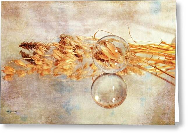 Greeting Card featuring the photograph Yesterday's Seeds by Randi Grace Nilsberg