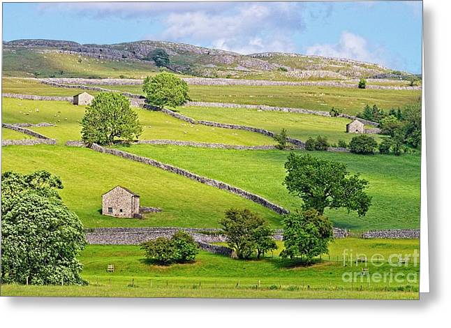 Yorkshire Dales Greeting Card