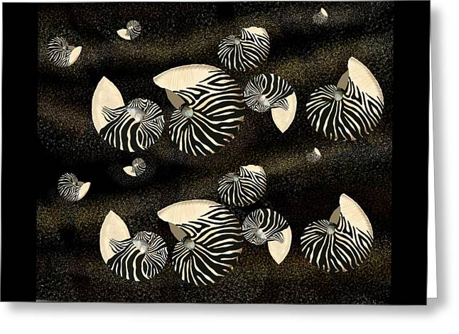 Zebra Pattern Nautilus Shells6 Greeting Card