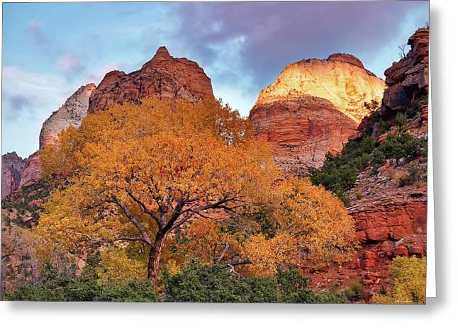Zion Cliffs Autumn Greeting Card by Leland D Howard