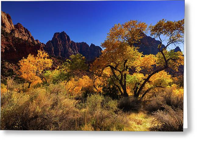 Greeting Card featuring the photograph Zions Beauty by Tassanee Angiolillo