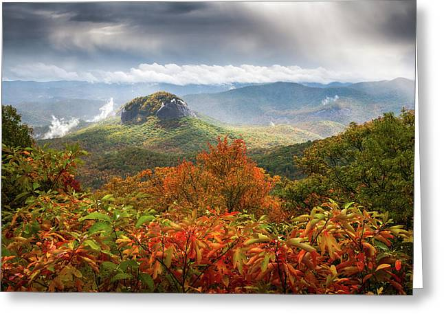 Blue Ridge Parkway Boxed Cards