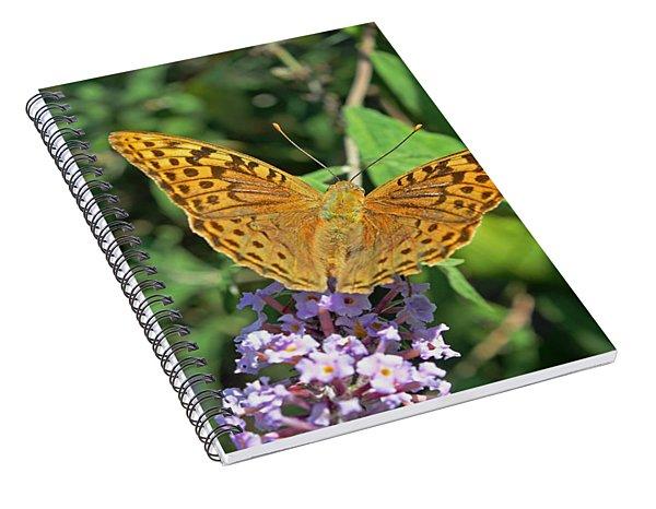 Balkan Fritillary Spiral Notebook